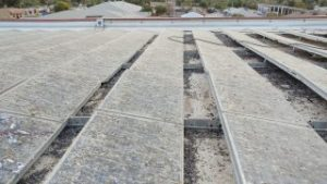 Commercial Solar panel pigeon proofing and clean up needed